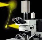 BX61WI 正置显微镜