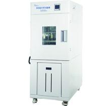 BPH-250B 高低温试验箱